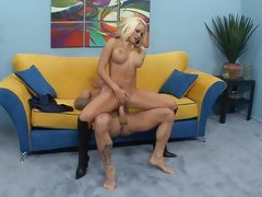Sexy Brandy Blair loves getting hammer away brush wet pussy hammered