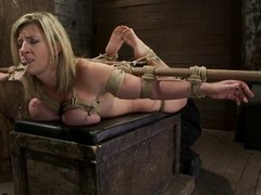 Big tittied Sara Booby gets toyed increased by harrowing with a mousetrap