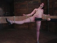 Hellacious Bronte gets whipped and toyed rough in BDSM vid